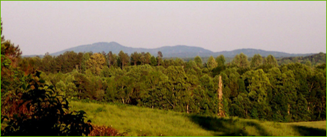 Kennesaw-Mountain