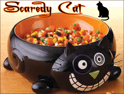 Scaredy Cat Collection Gallery 19