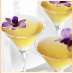 Summer Butterfly Invitations - Grey Goose Butterfly Martini