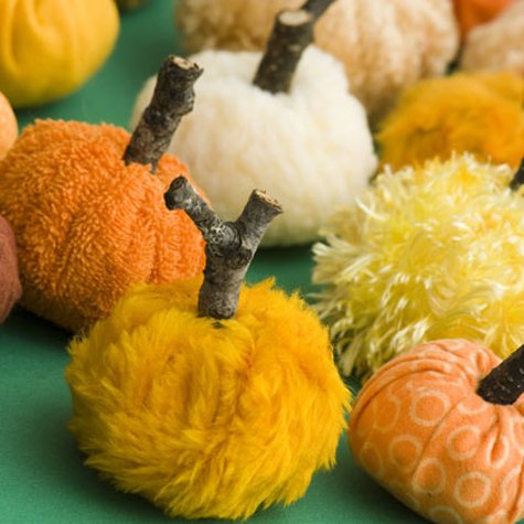 DIY Crafts: Squash Softies