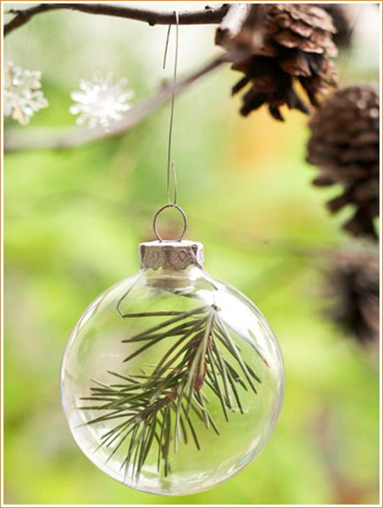 DIY Craft: Stylish Pinecone Decorations - Bubbly Branches