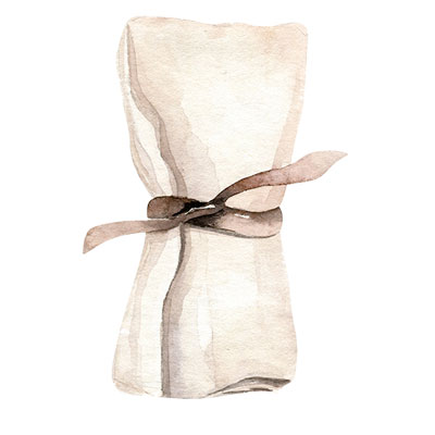 Entertaining Must-Haves All Purpose Cloth Napkin Soiree by Posh