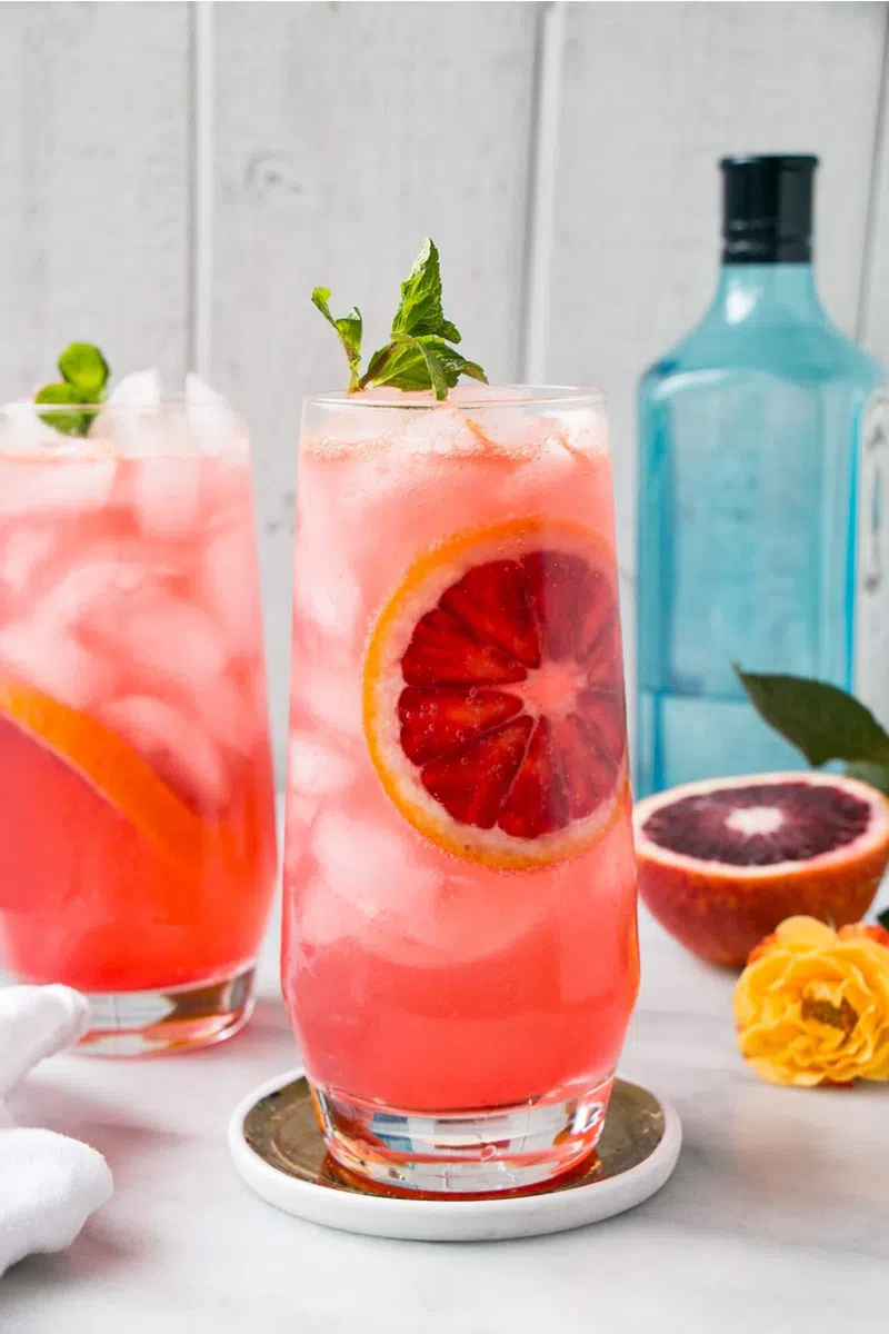 The 5 Best Citrus Cocktails to Make This Spring -Blood Orange Gin + Tonic